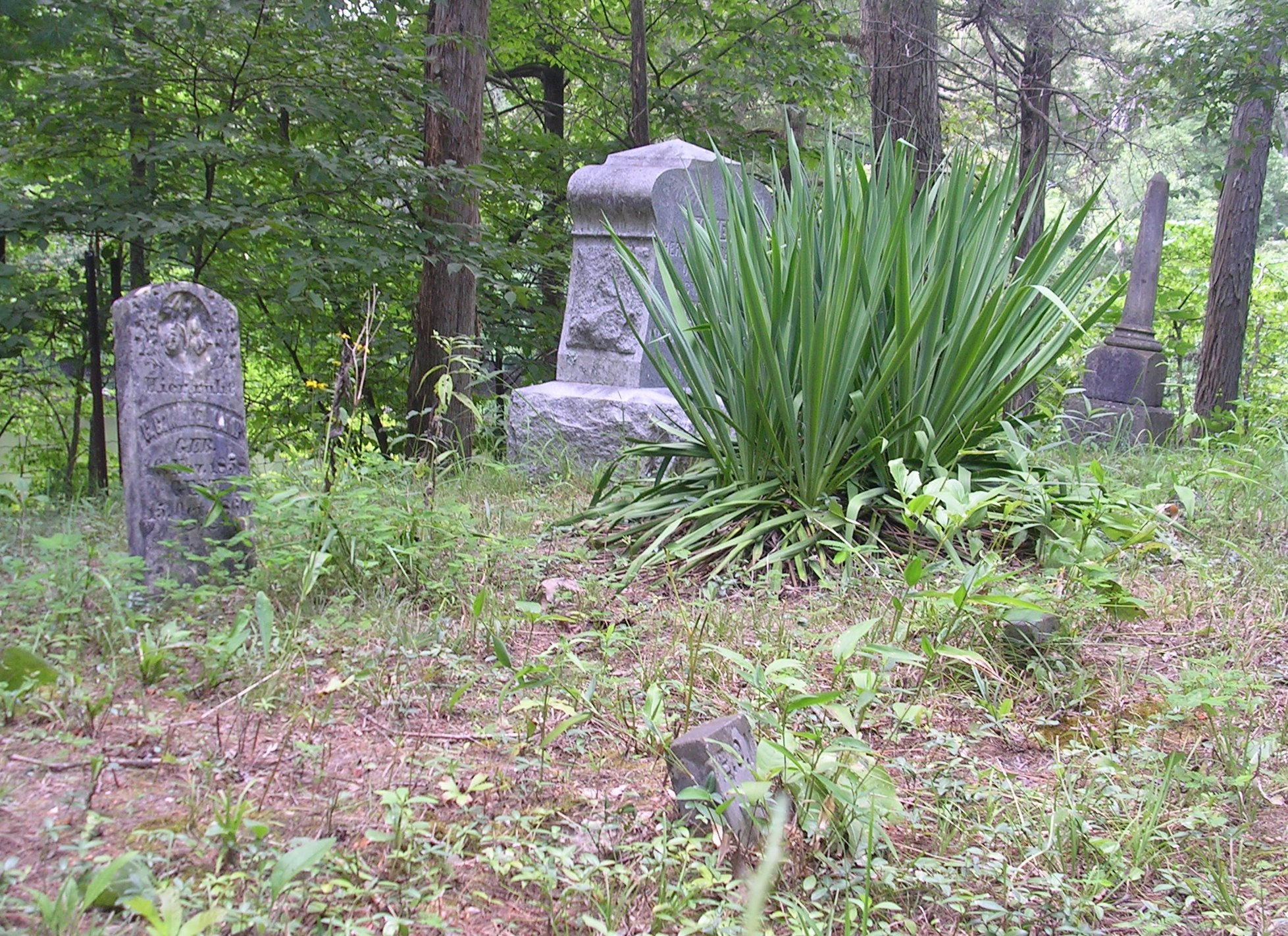 Another Grave Yard on Innsbrook Project